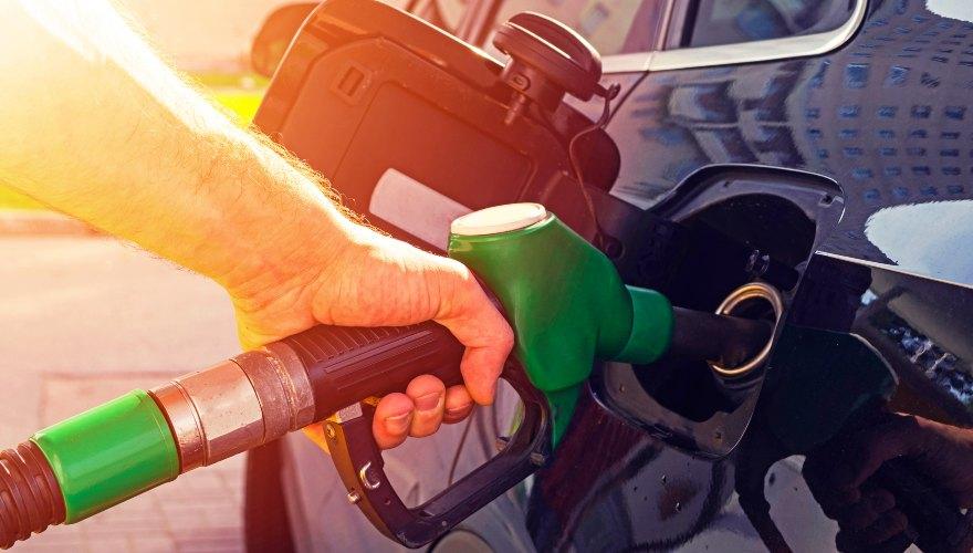 Biocombustibles: energía para la sostenibilidad