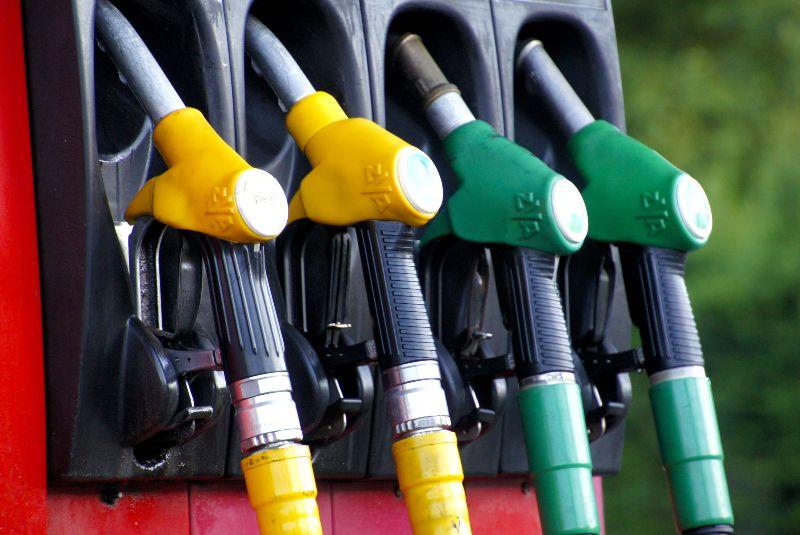 El biodiesel como oportunidad para las empresas