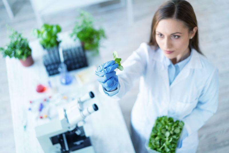 Biotecnología: su impacto en la industria alimentaria