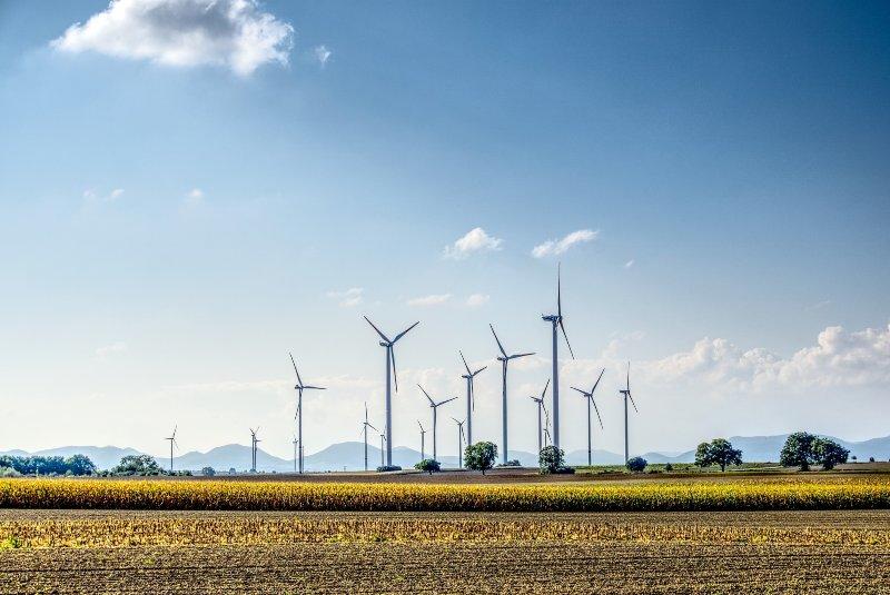 Energía renovable y no renovable: ¿en qué se diferencian?
