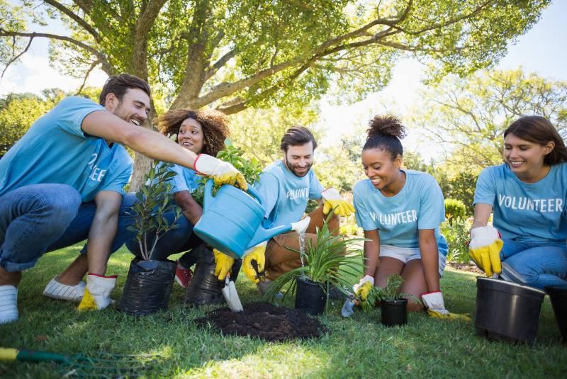 Actividades ambientales para divertirse en familia