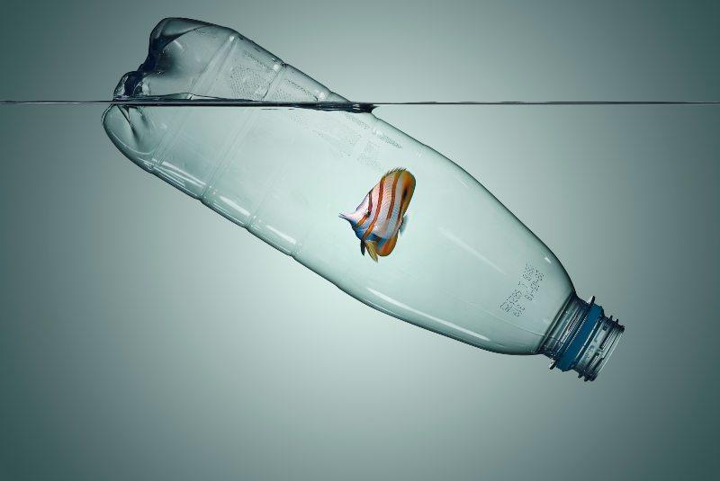 Plásticos de un solo uso: por qué evitarlos